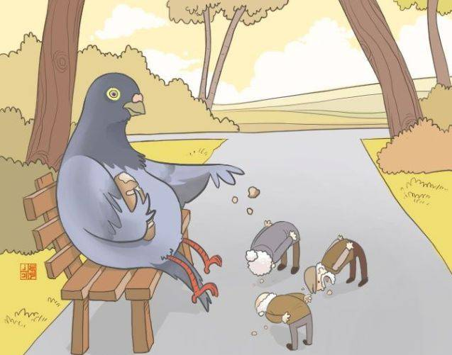 Pigeonfeeding191922_upside_down_08_1