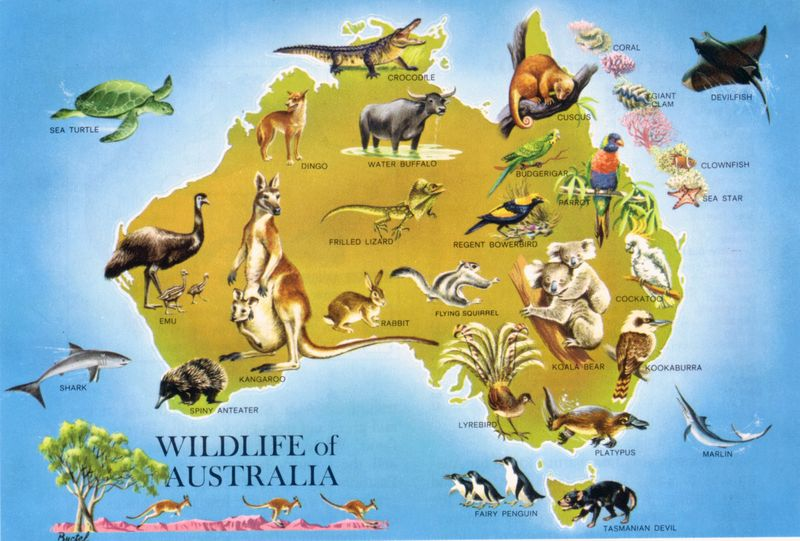 Wildlife_map_of_australia