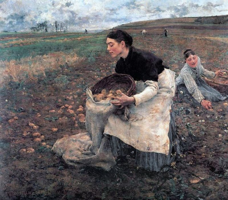 Les Bastien-Lepage (French painter, 1848-84) Harvesting Potatoes in October 1878