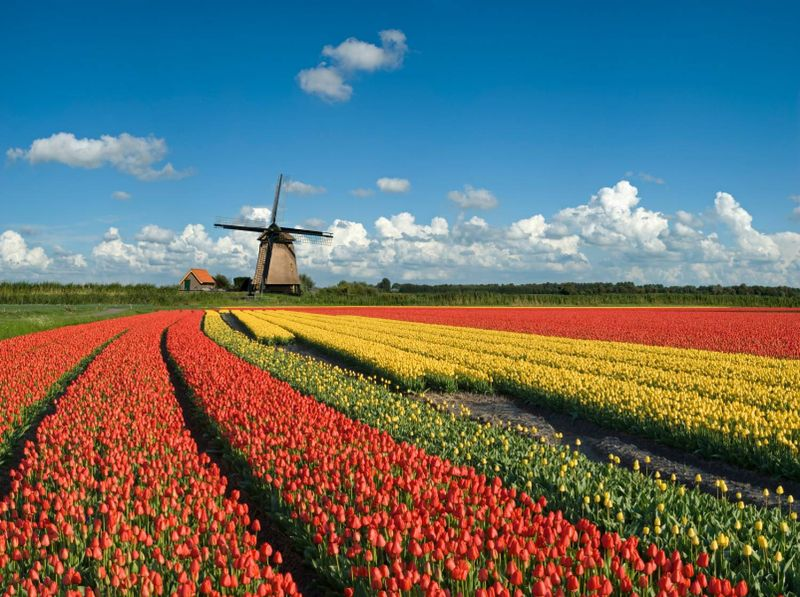 HollandNiederlande