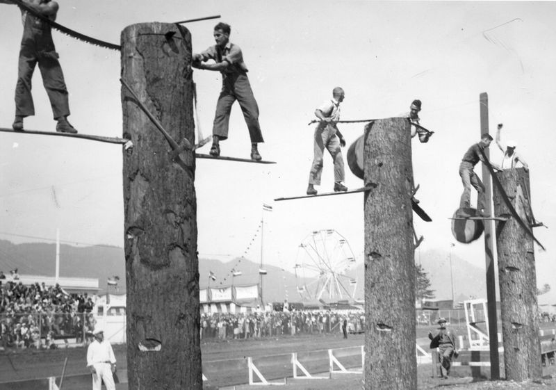 Tree felling contest at the Tillamook County Fair, Oregon in 1941