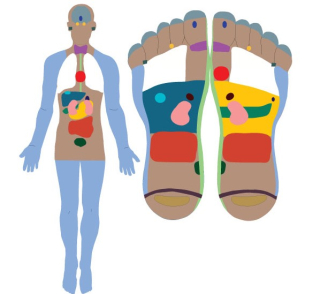 Reflexology-body-feet-final